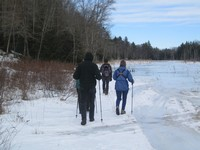 Hiking along Wolf Swamp